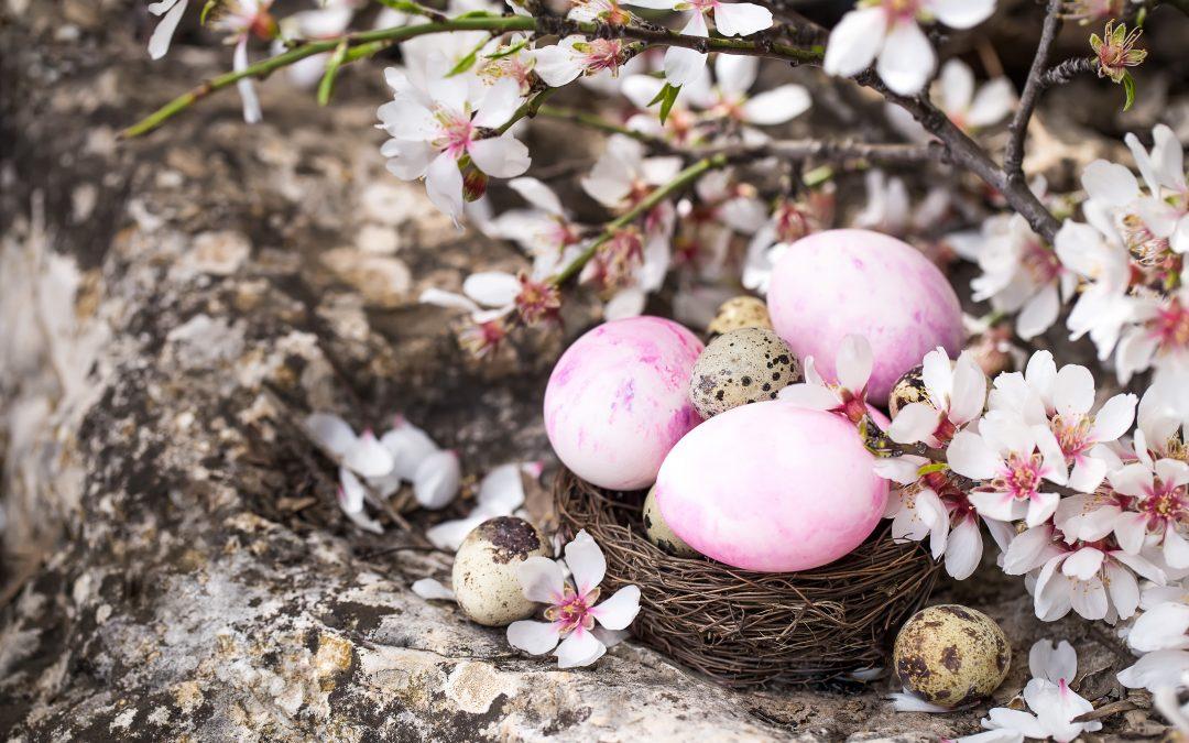 Świąt Wielkanocnych, pełnych wiary, nadziei i miłości …